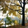 So einen schönen Herbst hatten wir lange nicht mehr!