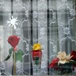 Fotobuffet_Heike_Scholz_blumenfenster